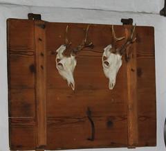 Die Zwei (W.D. Dreyer) Tags: alpe alm schädel