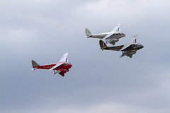 Two DH89 Dragon Rapides and DH90 Dragonfly (Paul Braham Photography) Tags: historic veteran vintage classic aeroplane airplane aircraft glider fighter trainer biplane monoplane dehavilland antonov druine calidus bucker aeronca