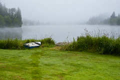 Rowboat along lake shoreline in tall grass (Jim Corwin's PhotoStream) Tags: nw olympicpeninsula pacificnorthwest awayfromitall balance beautiful beauty beautyinnature boat calm calmness climate destination dew earlymorning enjoy enjoyment fog foggy grass horizontal icon iconic idyllic illuminated inspiration inspirational inspire inspiring lake lakes landscape leisure leisureactivity lifestyle localattractions locallandmark marinescene mist misty moisture morningdew mothernature naturalworld nature northwest outdoors path peaceful photography quiet quietness recreation reflections relax relaxing restandrelaxation revitalization rowboat scenic serene shore shoreline solitude stunning sunrise tranquil travel trees vacation water weather