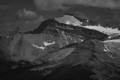 Balfour's Dominion (Darren Umbsaar) Tags: mountain mountains mount peak walcott burgess yoho bc british columbia canada canadian rockies takakkaw lake emerald summit scramble vaux