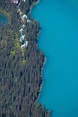 Half and Half (Darren Umbsaar) Tags: mountain mountains mount peak walcott burgess yoho bc british columbia canada canadian rockies takakkaw lake emerald summit scramble vaux