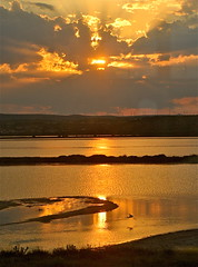 Coucher 2. Sunset 2. (JDAMI) Tags: coucher coucherdesoleil sunset sun soleil reflet héron oiseau envol eau etang leucate leucatelafranqui mer méditerranée nikon d600 tamron 2470 or dore nuages horizon