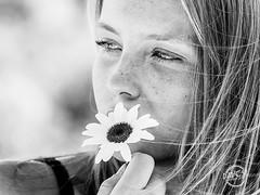 Roxane (davcsl) Tags: blackwhite bw biancoenero blackandwhitephotosonly davcsl france fille gard languedocroussillon monochrome monotones model noiretblanc noiretblancblackwhite nb nimes nîmes occitanie people portrait southoffrance women woman fleur flower marguerite