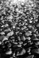 No boat... - Patagonia, Chile (pas le matin) Tags: travel voyage world peeble galet plage beach sea mer macro closeup dof patagonie patagonia stone chile latinamerica chili pierre southamerica canon 5d canon5d canon5dmkiii canoneos5dmkiii eos5dmkiii 5dmkiii bw nb noiretblanc blackandwhite monochrome