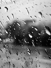 Rain on Window (Harley Mitchell) Tags: rain northcarolina blackandwhite