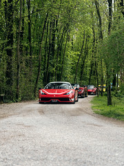 Cars in the Wood (Mattia Manzini Photography) Tags: ferrari 458 speciale 458speciale pagani huayra zonda dallara stradale v8 v12 supercar supercars cars car carspotting carbon carsandcoffee nikon d750 automotive automobili auto automobile italy italia brescia