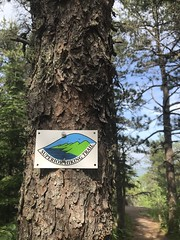 Megan Danielson (North Country Trail) Tags: hike100nct hikethenct ilovethenct northcountrytrail nct challenge greatnorthcollective explore exploremore discover discovermore blueblazes upnorth greatoutdoors adventuremore hiking hikemoreworryless outdoors nature backpacking camping findyourway findyourtrail findyourpark getoutside superior superiorhikingtrail sht family minnesota
