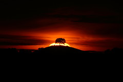Worth stopping for....... (Robin M Morrison) Tags: sunrise sun burrow hill somerset