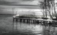 Over the lake (Wojttek) Tags: lake miedwie zachodniopomorskie