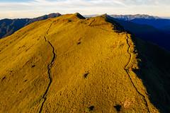 南華山|黃金草原 (里卡豆) Tags: 秀林鄉 南投縣 中華民國 aerial photography aerialphotography dji 大疆 空拍機 mavic2 drone mavic2pro