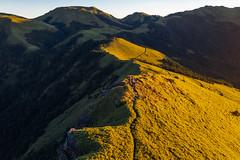 南華山|黃金草原 (里卡豆) Tags: 南投縣 中華民國 秀林鄉 photography aerial aerialphotography drone dji 空拍機 大疆 mavic2pro mavic2