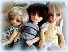 The Volks triplets (Livdollcity) Tags: volks yosd bjd doll dolls suzuna swd tanpopo kakeru kids children resin