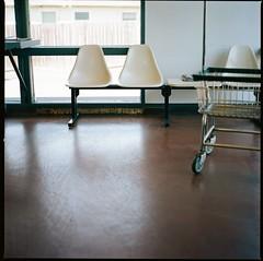 (gilbert terrazas) Tags: hasselblad medium format film f28 120 6x6 portland oregon carl zeiss kodak portra 160 chair 80mm pdx