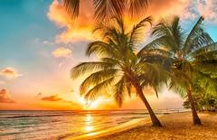 Khám phá Barbados - thiên đường ăn chơi hàng đầu trên thế giới (quynhchi19102016) Tags: ve may bay gia re di barbados