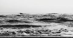 Black and white sea (Explored) (Blas Torillo) Tags: nautla veracruz méxico mexico playa beach mar sea ocean olas waves naturaleza nature espuma foam blancoynegro byn bn blackandwhite bnw bw exteriores outdoors paisaje landscape horizonte horizon agua water belleza beauty beautiful arte art fineart fineartphotography altocontraste highkey fotografíaprofesional professionalphotography fotógrafosmexicanos mexicanphotographers nikon d5200 nikond5200