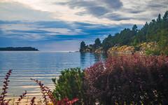 Craig Bay Evening Tide In (kensparksphoto) Tags: vancouverisland parksville evening dusk sunset craig bay pacificshoresresort hightide britishcolumbia canada scenery cloudsstormssunsetssunrises pacific georgiastrait