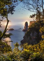 Oedolgae (MecCanon [Insta: JLPhotoOfficial]) Tags: oedolgae south korea jeju seogwipo night hdr long exposure cliff water sea ocean tropical canon 80d sigma 1835