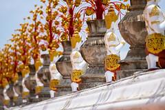 In a row (SLpixeLS) Tags: asia thailand mai watbanden temple buddist วัดบ้านเด่น statue angel pray repeatingpattern