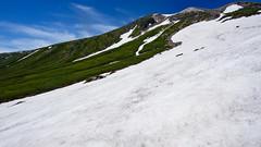 乗鞍大雪渓4・Mt.Norikura (anglo10) Tags: japan 長野県 松本市 雪 snow 山 mountain 乗鞍岳 御嶽山
