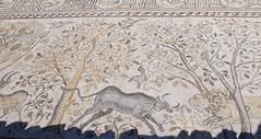 Ohrid, Macedònia del Nord. Mosaic de Heracleia Lincestis (Ciutat d'Hèrcules) fundada per Filip II de Macedònia a la meitat del segle IV a.C. (heraldeixample) Tags: heraldeixample macedonia macedònia macedoniadelnord macedoniadelnorte northofmacedonia ohrid heraclealincestis mosaic mosaico
