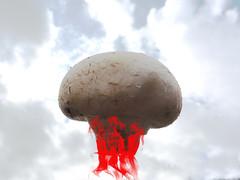 Mushroom cloud #2 (amy's antics catching up slowly) Tags: wah wearehere mushroom flames sky atomic