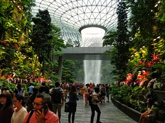 On vacation ,in Singapore, i love this city (Leguman vs the Blender) Tags: singapore changi asia airport jewel oneplus5t