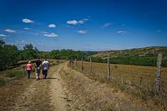 Promenade champêtre (thierrybalint) Tags: auvergne pâturage paysage landscape thierrybalint nikoniste pasture plateau personnes people promenade walk clôture fenced ciel sky