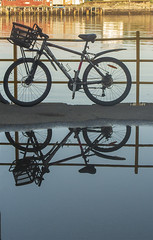 Bicycle (judmac1) Tags: fence bicycle reflection water puddle