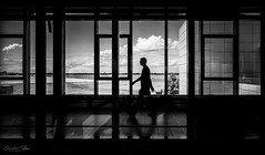 silhouette.and.airfield (grizzleur) Tags: ricoh ricohgrii grii gr2 airport light dark shadow atmosphere sky bright background silhouette stride wide pano panorama swing swinging smooth mellow dogdays lines straight music musical reflection reflections relax relaxing relaxed taking it east