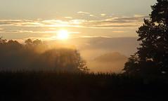 sunlight thru fog (scott1346) Tags: morning sunrise illumination foggy light colors blue yellow lavender canont3i autofocus 1001nights 1001nightsthenew 1001nightsmagiccity 1001nightsmagicwindow thegalaxy tamronaf18270mmf3563diiivcldasphericalif