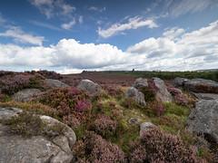 Millstone Edge (little mester.) Tags: easternmoors hathersagemoor millstoneedge nationaltrust clouds heather purple surpriseview