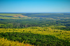 Donets Ridge. (denkuznets81) Tags: steppe ridge donbass donetsk landscape green grass trees summer hill донбасс донецк степь пейзаж природа трава