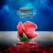 La Esencia de una rosa..