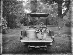 Garden Cart on Glass (Larry Buechler) Tags: glassplate largeformat dryplate jlane crowngraphic kodakektar hc110 garden gardening 4x5