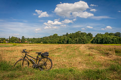 2019 BIke 180: Day 98, August  9 (suzanne~) Tags: field summer straw mowed bike bicycle 2019bike180 bavaria germany gauting