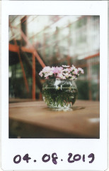On a cloudy day (Duong RKUDO) Tags: mintcamera mint fujifilm instax saigon rkudo film analog