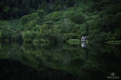 Sea of Green (Mark Hollis Photography) Tags: boathouse lakedistrict rydalwater