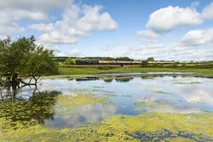 Reflected (4486Merlin) Tags: england europe shropshire unitedkingdom transport steam railways britannia midlands 70000 cravenarms exbr brstd7mtbritannia pond lsl welshmarchesexpress saphostrains
