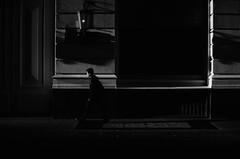 A Paso Firme (natan_salinas) Tags: streetphotography fotografíaurbana fotografíacallejera bw blackwhite blanconegro bn blancoynegro blackandwhite monocromático monochrome nikon gente portrait retrato d5100 street calle urbe urban urbano 50mm joven young cara face rostro streetportrait retratocallejero retratourbano people noiretblanc valparaíso valpo city ciudad luz light shadow sombras contraluz chile hombre man male reflejos reflexes