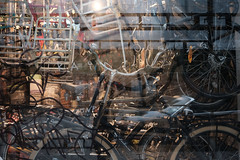 A full shop (Passetti) Tags: kopehagen kobenhavn danmark 2019 stad scandinavie bikes fietsen cykler cykel winkel fietsenwinkel reflectie fietsenframes bicycles