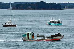 Bateaux à l'entrée du Golfe du Morbihan (Port Navalo) (ijmd) Tags: france morbihan golfedumorbihan presquîlederhuys bateau boat portnavalo