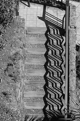 stairs and shadow (Wackelaugen) Tags: puertodelacruz santacruz tenerife teneriffa spain europe canaries canaryislands canaryisles canon eos 760d photo photography stephan wackelaugen black white bw blackwhite blackandwhite mono noiretblanc schwarz weis schwarzweis shadow fence stairs