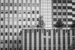 Facades, Chicago BW (SteMurray) Tags: review chicago architecture america usa ste murray steie travel modern black white city skyline facade
