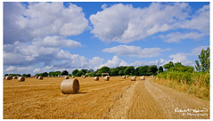 Summer bales (chromaphoto uk) Tags: farm bales straw hay landscape field clouds bluesky fujifilm fuji 18135