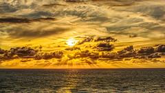 Coup de soleil (musette thierry) Tags: soleil sun sunday sundaylights musette thierry d800 nikon