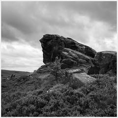 _DSC2467 (alexcarnes) Tags: ramshaw rocks leek staffordshire roaches alex carnes alexcarnes nikon d850 sigma 28mm f14 art