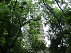 behind trees (VERUSHKA4) Tags: image astoundingimage china canon chinese asia ville architecture xian spring may tree trunk verdure greens leaves green vue view sky ciel travel museum xianmuseum building season town temple xiaoyan