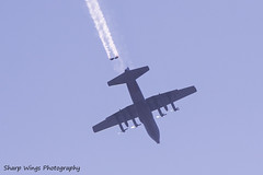 Skydivers (Sharp Wings Photography) Tags: skydivers skydiving avalon avalon2019 aircraft airplane c130 hercules
