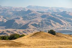 Pleasanton Ridge Regional Park, Pleasanton, California, USA (takasphoto.com) Tags: alameda alamedacounty america bayarea berkeley california californiastate d610 ebrpd eeuu eastbay eastbayregionalparkdistrict estadosunidos fotografíadepaisaje fullframe landscape landscapephotography landschaftsfotografie lens livermorevalley nikkor nikkor70300mmf4556gedifafsvrzoomlens nikon nikon70300mmf4556gedifafsvrnikkorzoomlens nikond610 norcal northamerica northerncalifornia oakland paisaje photography pleasanton pleasantonridge pleasantonridgeregionalpark regionalpark ridge sfbayarea sfbay sanfrancisco sanfranciscobayarea telephoto telephotolens travel travelphotography traveling travels usa unitedstates unitedstatesofamerica viaje westcoast westoakland zoomlens アメリカ合衆国 カリフォルニア サンフランシスコ ニコン ニッコール 加州 北カリフォルニア 北米 米国 美国 西海岸 風景 風景写真