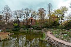 Wroclaw Botanic Garden (Jorge Toselli) Tags: wroclaw poland nikon botanic garden tokina 1116